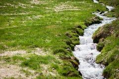 在领域的小小河 库存图片
