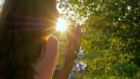 在领域的少妇嗅到的花4k在日出期间在乡下 影视素材