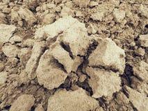 在领域的干燥多灰尘的黏土 空的被犁的领域等待播种 在领域的温泉天 免版税库存图片