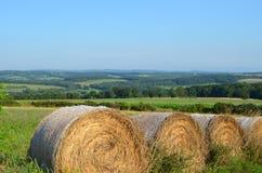 在领域的干草捆在北部纽约小山在夏天 免版税库存照片