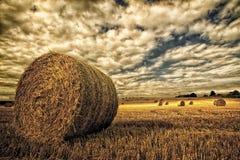 在领域的干草捆在恼怒的天空下 库存照片