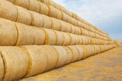 在领域的干草捆在收获以后 免版税图库摄影