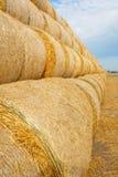 在领域的干草捆在收获以后 免版税库存照片