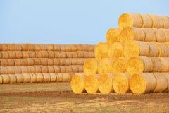 在领域的干草捆在收获以后 免版税库存图片