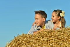 在领域的愉快的孩子在夏天 免版税图库摄影