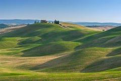 在领域的托斯坎夏天在美丽的景色 免版税库存照片