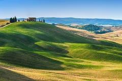 在领域的托斯坎夏天在美丽的景色 免版税库存图片