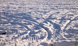 在领域的拖拉机踪影在冬天 库存图片