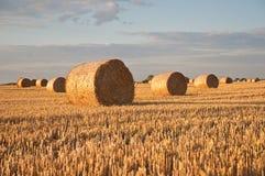 在领域的日落与干草卷  免版税图库摄影