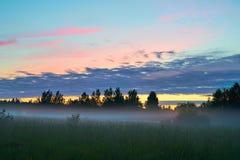 在领域的有雾的日出 免版税库存照片