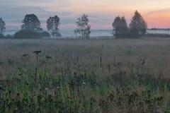 在领域的有雾的日落 库存图片