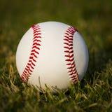在领域的棒球。在绿草的新的白色球 库存照片