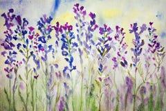 在领域的淡紫色 水彩绘画 免版税库存照片
