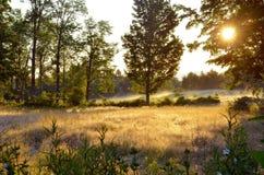 在领域的清早日出, Bridgton,缅因-埃里克L 约翰逊摄影 库存照片