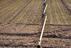 在领域的灌溉系统 免版税库存图片