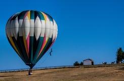 在领域的热空气气球与马观看 库存照片