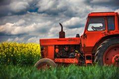 在领域的红色拖拉机 库存图片