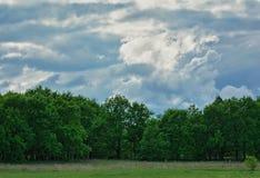 在领域的美好的简单的天空天际 免版税图库摄影