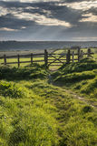 在领域的美好的英国乡下风景在日落 免版税库存图片