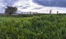 在领域的美好的英国countrysidepanorama风景在 免版税图库摄影