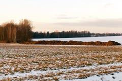 在领域的肥料,特写镜头 库存照片