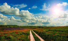 在领域的路与花和阴暗天空 免版税库存照片