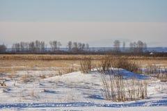 在领域的随风飘飞的雪 图库摄影