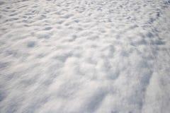在领域的雪 库存图片