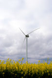 在领域的风车 免版税图库摄影