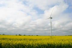在领域的风车 免版税库存照片