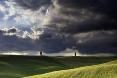 在领域的2棵孤立塞浦路斯树在Val的D'Orcia圣Quirico附近在有风雨如磐的天空的托斯卡纳 免版税图库摄影