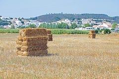 在领域的Haybales在Aljezur葡萄牙附近 免版税库存照片