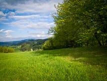 在领域边缘的春天 库存图片