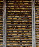 在领域/村庄-塞尔维亚上的日落-伏伊伏丁那,KisaÄ  villageCorn存贮设施-村庄人生的背景-木头 库存照片