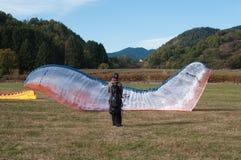 在领域登陆的滑翔伞 库存图片