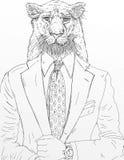 在领带的一头狮子,穿戴在夹克 库存图片
