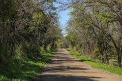 在颜色的乡下公路 图库摄影
