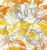 在颜色的叶子 免版税库存照片