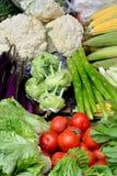 在颜色的新鲜蔬菜 免版税图库摄影