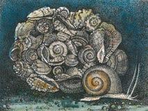 在颜色的蜗牛 免版税库存照片