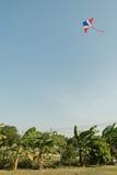 在风和清楚的天空的风筝飞行与香蕉树 免版税库存照片