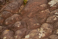 在风和水造成的砂岩侵蚀的样式 Phu Hin Ro 库存照片