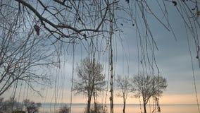 在风平浪静的早期的春天 免版税图库摄影
