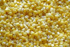 在风景上面细节的甜玉米种子 图库摄影