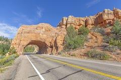 在风景小路12的自然曲拱路隧道 免版税库存图片