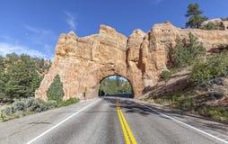 在风景小路12,美国的自然曲拱路隧道 库存图片