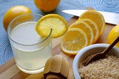 在风景庄稼的柠檬水必要 免版税图库摄影