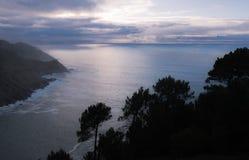 在风景日落的树剪影在大西洋海岸线, monte igueldo 免版税库存照片