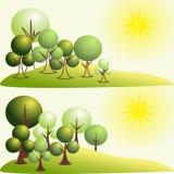 在风景的抽象风格化树 库存图片