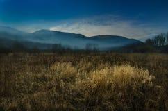 在风景的有薄雾的早晨 免版税库存图片